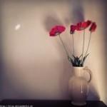 Flowers by Paul Philip Abrigo