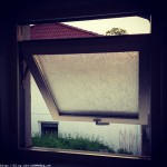 Window by Paul Philip Abrigo